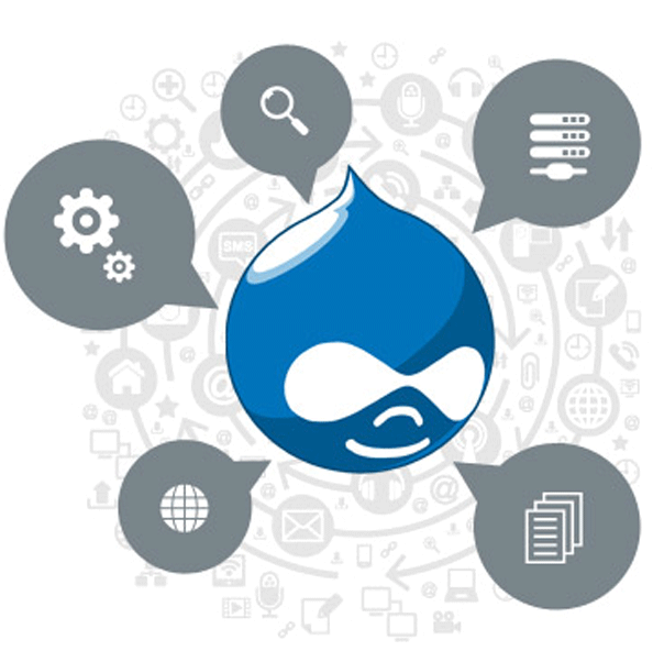 drupal-what-to- expect