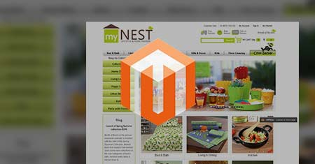 Magento Ecommerce Website Services