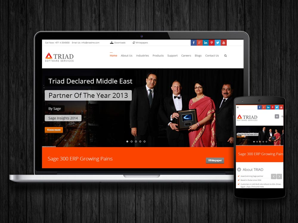 WordPress CMS Development bangalore