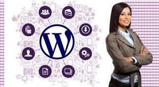 wordpress-extension