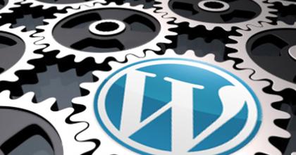 Wordpress Module Installation Services