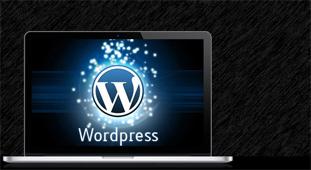 Wordpress Website Development Company Bangalore India