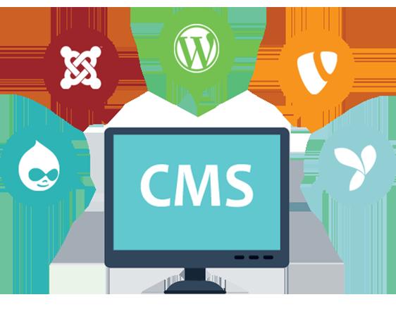 Content- Management System Website Developement Bangalore